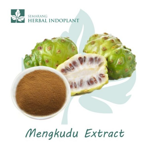 Factory-Direct-Supply-Natural-Morinda-Herbal-Plant