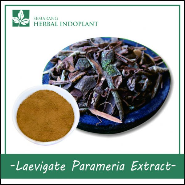 LAEVIGATE-PARAMERIA-POWDER-EXTRACT