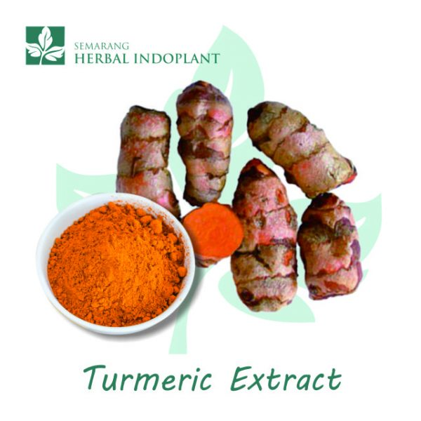 Factory-Direct-Supply-Natural-Herbal-Plant-Turmeric