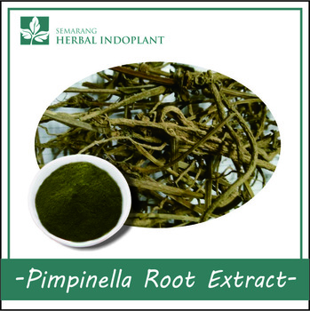 PIMPINELLA-ROOT-POWDER-EXTRACT.jpg_350x350