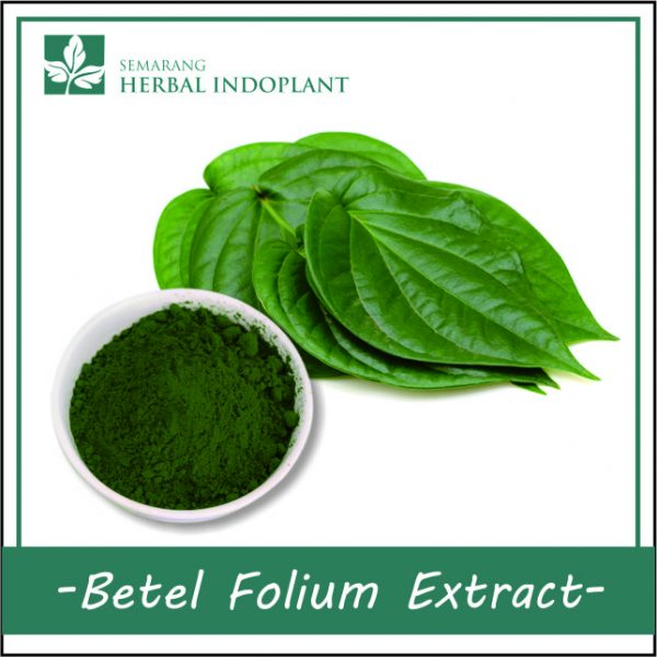BETEL-FOLIUM-POWDER-EXTRACT