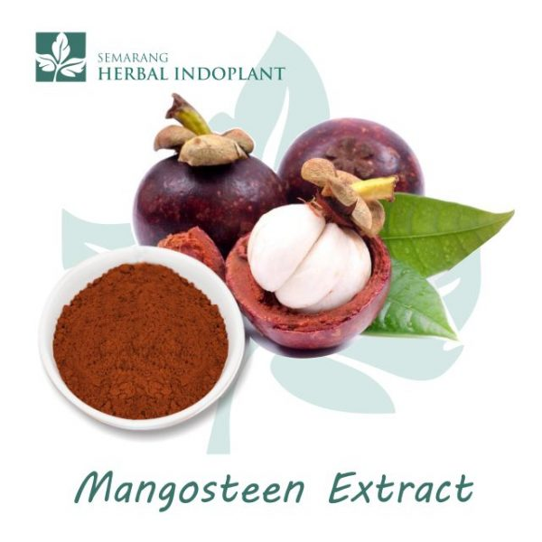 Factory-Direct-Supply-Natural-Herbal-Plant-Mangosteen