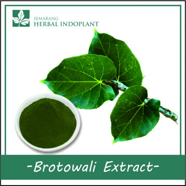 BROTOWALI-POWDER-EXTRACT